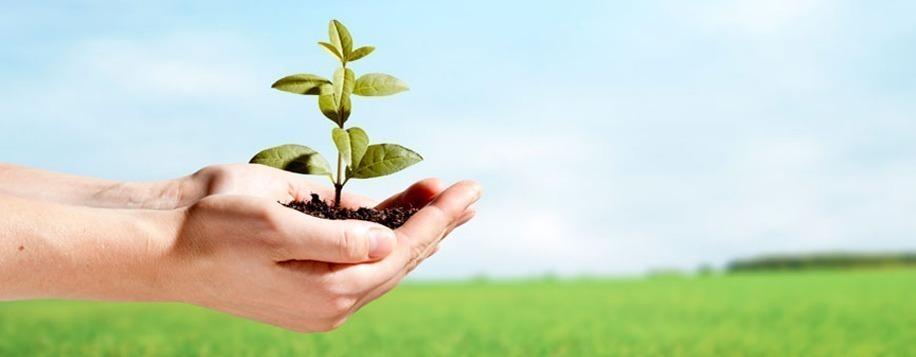 Faça sua parte para um planeta limpo e saudável