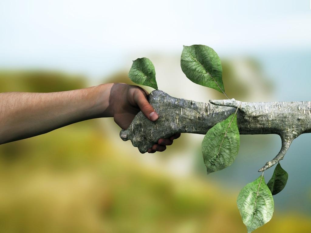 Trato de paz entre o homem e a natureza